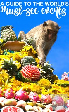 Visiting a new destination always fills us with a sense of wanderlust, and being a part of local events and festivities adds to the passion for travel. We feature 14 of the world's best events from the colourful to the more bizarre such as the Monkey Buffet Festival in Thailand, celebrated every year as a gift to the free-roaming monkeys there. #travelevents #festivals