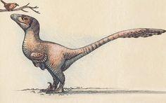 Deinonychus - Google Search