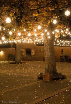 Outdoor Wedding Lighting Ideas String lighting with outdoor fireplace S Backyard Lighting, Outdoor Lighting, Lighting Ideas, Lights For Backyard, Driveway Lighting, Event Lighting, Tree Lighting, Landscape Lighting, Lighting Design