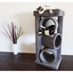 New Cat Condos Premier Triple Cat Tunnel - 18737018 - Overstock.com Shopping - The Best Prices on New Cat Condos Cat Furniture