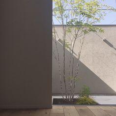 本当に必要なモノ達と暮らす〜余白のある空間づくりが快適さを生み出す家___omalさんのおうちを探索! | ムクリ[mukuri] Image Sites, Shiga, Livingston, Geek Culture, Web Images, Madrid, House, Pranks, Braid