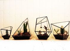 Hand welded metal and glass geometric terrariums