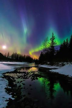 #auroras