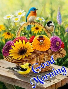Happy Good Morning Quotes, Good Morning Greeting Cards, Beautiful Morning Quotes, Good Morning Happy Thursday, Happy Morning, Good Morning Greetings, Morning Thoughts, Good Morning Flowers Pictures, Good Morning Beautiful Images