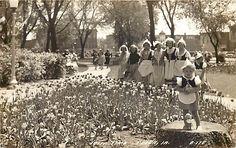 Tulip Time Pella IA vintage postcard