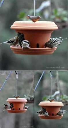 Bird feeder garden bird feederBird feeder garden bird feederThese terra cotta flower pots turned bird feeders are beautiful additions to you .These terra cotta flower pots turned bird feeders are beautiful additions to your