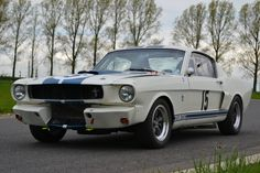 Shelby Gt350 Fia Fastback for Sale in UK | Classic & Sports Cars Sales, Restoration & Service