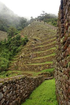 Winay Wayna, Peru. Dry stone walling surely outlives all other sorts of retaining walls. And gorgeous!! totally gorgeous.