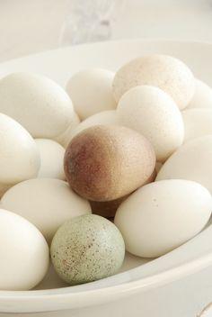 Osterdeko reloaded – Liebesbotschaft Blog Easter, Deco, Breakfast, Food, Calculator, Kids, Morning Coffee, Easter Activities, Essen