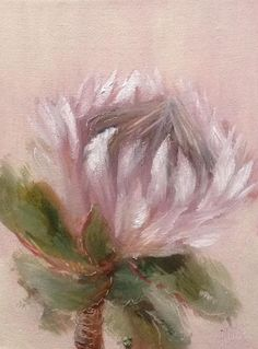 'Fading protea daily painting by Heidi Shedlock Small Paintings, Oil Paintings, Abstract Paintings, Protea Art, Oil Painting Flowers, Flower Paintings, South African Art, Pastel Drawing, Beach Art