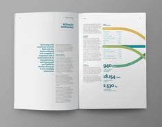 Interesting infographics in an annual report