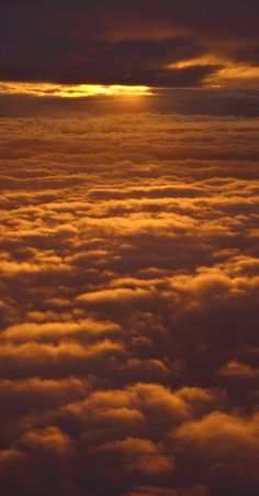 Sunset on the Clouds Over Seattle (photo: JD Hascup) Above The Clouds, Sky And Clouds, Beautiful Sunset, Beautiful World, Cool Photos, Beautiful Pictures, Dame Nature, Mellow Yellow, Amazing Nature