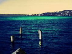 I took this on the Tacoma Water Front