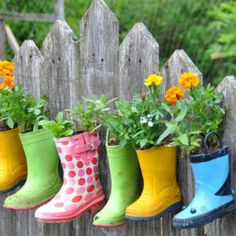 rainboot-garden-on-a-fence