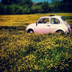 Toujours dans le rose et les petites tailles, la FIAT 500 rose pâle, ultra #vintage on adore !