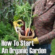 How To Start An Organic Garden►►http://off-grid.info/blog/how-to-start-an-organic-garden/?i=p
