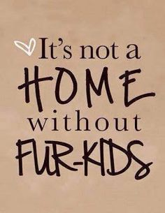 The Foster Failures: it's not a Home without Fur kids