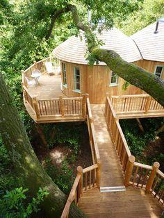 Nada De Conto De Fadas: Casa na árvore