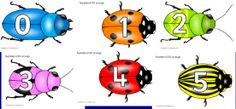 Isot numerohyönteiset 0-50