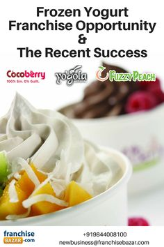 #Frozen #Yogurt #Franchise #Opportunity &  #Success Factors