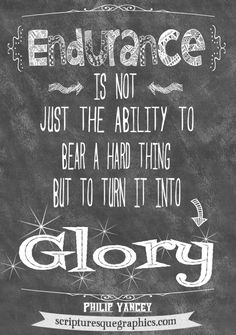 Endurance Quotes Brilliant Perseverance Is More Than Enduranceit Is Endurance Combined With