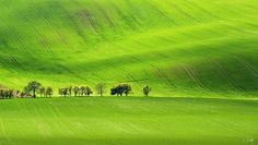 Green waves - South Moravia