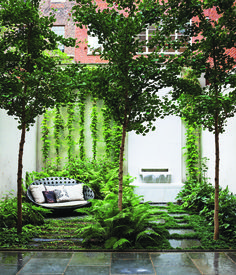 B&B Italia Outdoor's Canasta sofa, by Patricia Urquiola, shares a shady patch in the ground-floor Carnegie Hill garden with three gin...