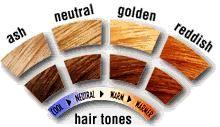 warm skin tones on pinterest cool skin tone red hair