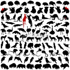 Find Hundred Silhouettes Wild Rare Animals Australia stock images in HD and millions of other royalty-free stock photos, illustrations and vectors in the Shutterstock collection. Animal Close Up, Wood Carving For Beginners, Maori Art, Australian Animals, Rare Animals, Wildlife, Illustration, Poster, Image