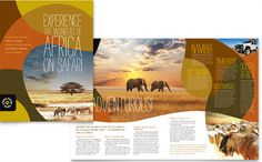 African Safari Brochure Design Template by StockLayouts Travel Brochure Design, Travel Brochure Template, Travel Design, Brochure Examples, Brochure Layout, Leaflet Design, Graphic Design Templates, Pamphlet Design, Graphisches Design