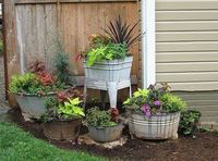 Rustic container gardens.                                                                                                                                                                                 More