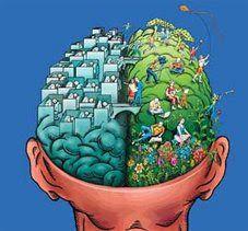 Neuroplasticidad y conflicto entre hemisferios http://davidaso.fisioterapiasinred.com/2012/07/neuroplasticidad-y-el-conflicto-entre-hemisferios.html