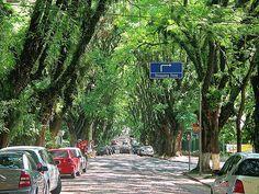 Rua Gonçalo de Carvalho - Porto Alegre / Brasil.