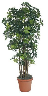Fake Trees For Home Decor The Decorating Artificial Plants