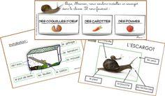 projet escargot rigolo 1 2 3 dans ma classe moi cole pinterest. Black Bedroom Furniture Sets. Home Design Ideas