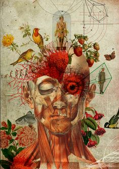 "asylum-art: "" Diego Max The art of Diego Max highlights the strong relationship between two aspects, art and anatomy. From his early years, Diego Max was enchanted by retro features of antique prints. Art And Illustration, Arte Inspo, Kunst Inspo, Biology Art, Pattern Texture, Medical Art, Photocollage, A Level Art, Fine Art"