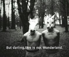 But darling, this is not Wonderland.