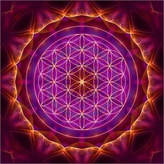 """It is now becoming clear that geometry - and thereby proportion - is the hidden law of nature. It is even more fundamental than mathematics, for all the laws of nature can be derived directly from sacred geometry."