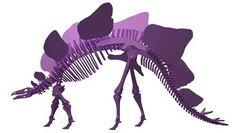 Stegosaurus - Covered Lizard Dinosaur Plasma Version (Anatomically Correct)