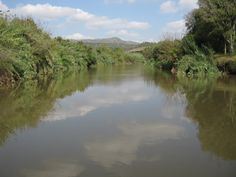 Take a Hike, in Hartbeespoort Day Hike, Mtb, South Africa, Places To Go, Take That, Hiking, River, Adventure, Outdoor