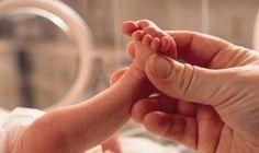 Prematüre Bebek Bakımı - Gebelik; 40 haftalık bir yolculuktur. İlk haftadan başlayarak son haftaya kadar her hafta hatta her gün bebeğin anne karnında biraz