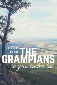 Last week I was lucky enough to spend a beautiful day exploring the Grampians National Park with Go West Tours. The Grampians is home to many of the state's species of… Places In Melbourne, Melbourne Travel, New Zealand Travel, Australia Travel, Australia Destinations, Travel Destinations, Travel Articles, Culture Travel, Travel Guides