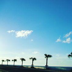 太陽連休中 数日前まではもう沖縄の住民はきっと皆梅雨明けた気でいました 気のせいでした(Д )  大雨が続いていますが天気がいい日にはこんなに素敵な景色の58号線を通ってサーフィンへ行きますよ  太陽さんにはしっかりと今休んで頂いて夏には元気にサンサンと海を照らしてもらいたいですね\(o)/ #沖縄#シーナサーフ#サーフィン#サーフィンスクール#やしのき#南国#号線#ごっぱち#海#太陽#青空#梅雨#大雨#太陽が恋しい#でも雨も大事#水不足は避けたい#okinawa#seanasurf#surfing#surfingschool#surfinglife
