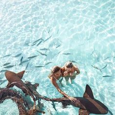 MAKE NEW FRIENDS FROM DIFFERENT PLACES  source unknown #STAYUNITED