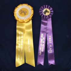Twin Cities Dressage Open -Fortuna Farm Long Lake Minnesota Something For Everyone All- Arabian Horse Show - Lot of 2 Show Ribbons by QuasaricTreasures on Etsy Purple Ribbon, White Ribbon, Wooden Coat Rack, City Farm, Long Lake, Twin Cities, Drying Herbs, Ribbon Rosettes, Ribbons