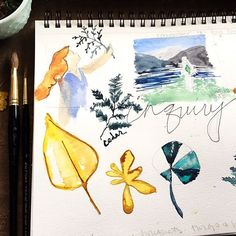 Ideas for an upcoming collection.  See more at my blog.  www.ochrenest.com/blog . . . .  #botanical #botanicalart #botanicaldrawing #botanicalillustration #botanicalwatercolor #looseflorals #watercolorflowers #watercolourfloral #bedeeplyrooted #calledtobecreative #abmlifeiscolorful #mybeautifulmess #pursuepretty #foundforaged #seekthesimplicity #sketchbook #watercolor #inquiry #ochrenest    #Regram via @ochrenest
