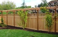 Fence with trellis and plantings.