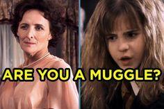 I got 0% Muggle! You're all magic, baby! What % Muggle Are You?