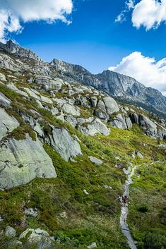 Steilwand Andermatt, Switzerland, Kanton, Hiking, Mountains, World, Nature, Flora, Travel