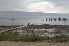 Ein Gev, water level 8-12-2013
